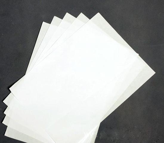 prop 19 argumentative paper